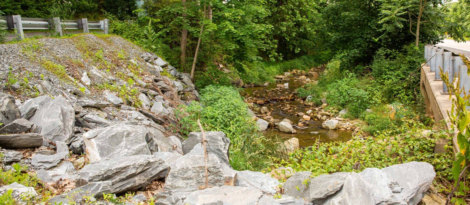 Kreutz Creek